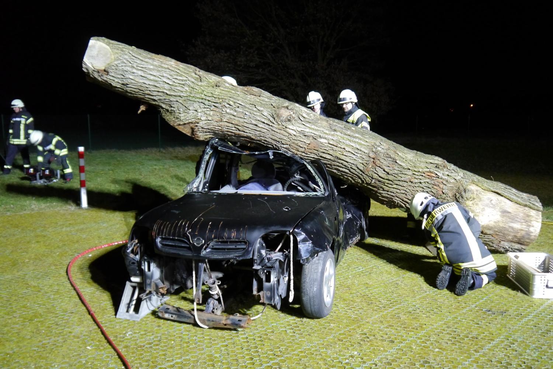 """Gruppendienst """"Baum auf Auto"""""""