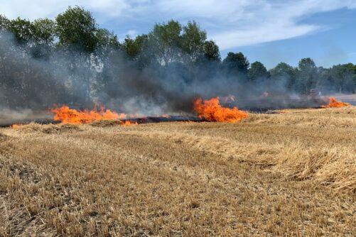 Pressen – und Flächenbrand