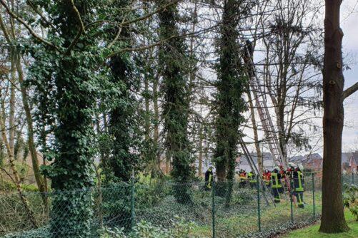 Baum droht auf Wohnhaus zu stürzen